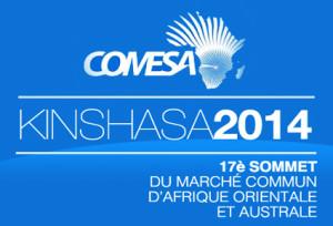 Kinshasa-17eme Sommet du COMESA